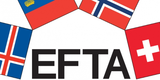 Having a voice in Brussels from outside the EU: the lessons of EEA-EFTA