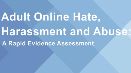 Revenge pornography and online hate content: the evidence underpinning calls for regulating online harms in the UK