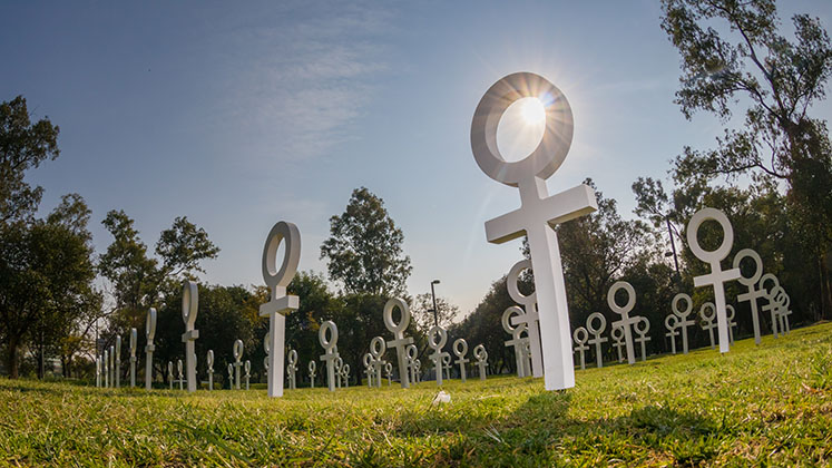 White crosses in the form of the Venus symbol aligned rows in Mexico City as part of a UN Women art installation