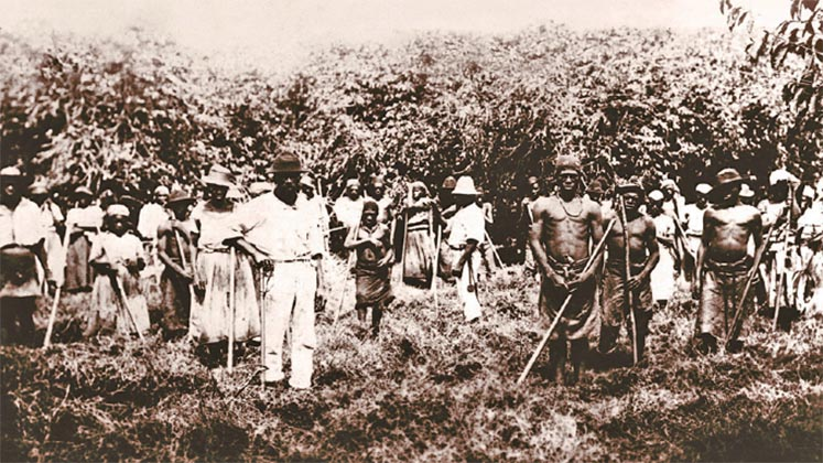 Slaves working on the Ibicaba plantation in São Paulo state, Brazil