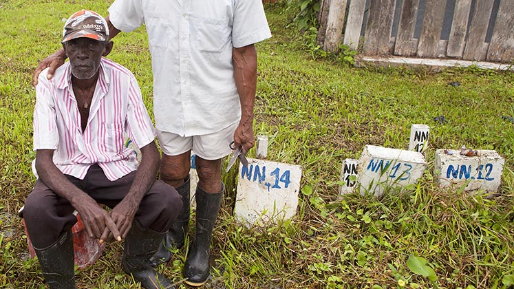 Numbered graves for unidentified victims of enforced disappearance in Nariño, Colombia