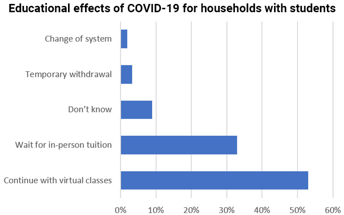 Educational effects of COVID-19 on Ecuadorian households containing students