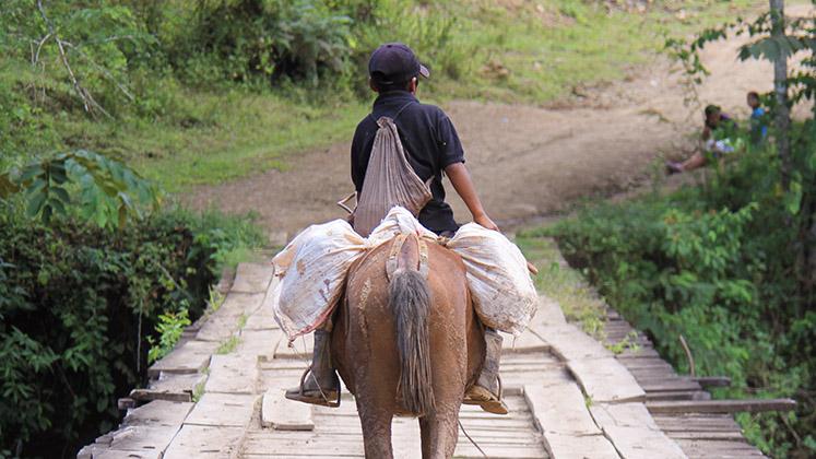 A young boy crosses a bridge on on horseback laden with goods in Las Maravillas, Nicaragua