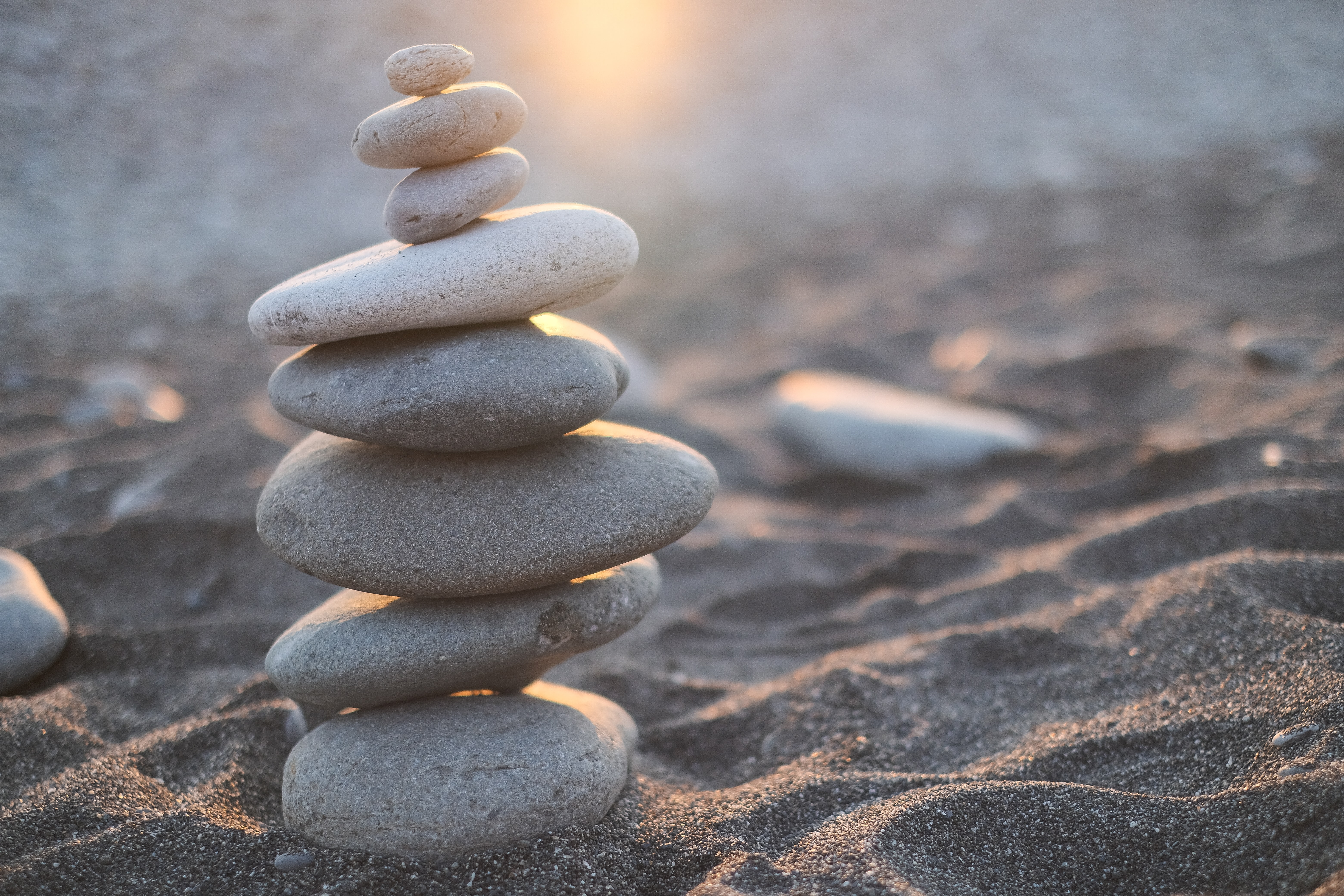 Resilience and the career journey: what can we learn from LSE alumni?