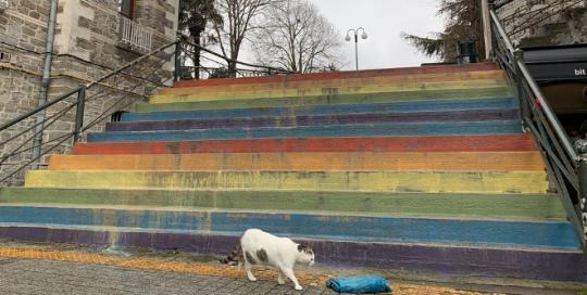 Who is afraid of the rainbow? The politics of LGBTQ symbols in Turkey
