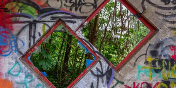 graffitied wall with two diamond shaped windows showing lush green forest behind