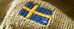 European Parliament elections preview: Sweden