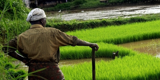 Farming ballots: Indian elections and the global agrarian challenge
