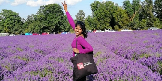 A trip to the Mayfield Lavender Farm