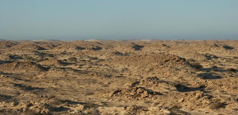 Western Sahara (cropped) by bobrayner (CC BY 2.0)