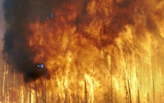 Forest Fire (Courtesy of Wikimedia website)