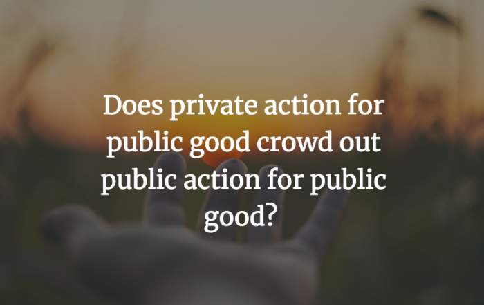 Does private action for public good crowd out public action for public good?