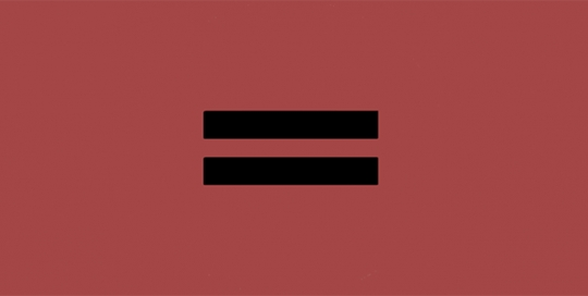 Gender over Race? Equity and inclusion in higher education