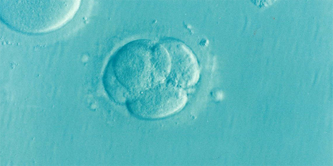 Egg freezing: the case for extending the (arbitrary) ten-year storage limit